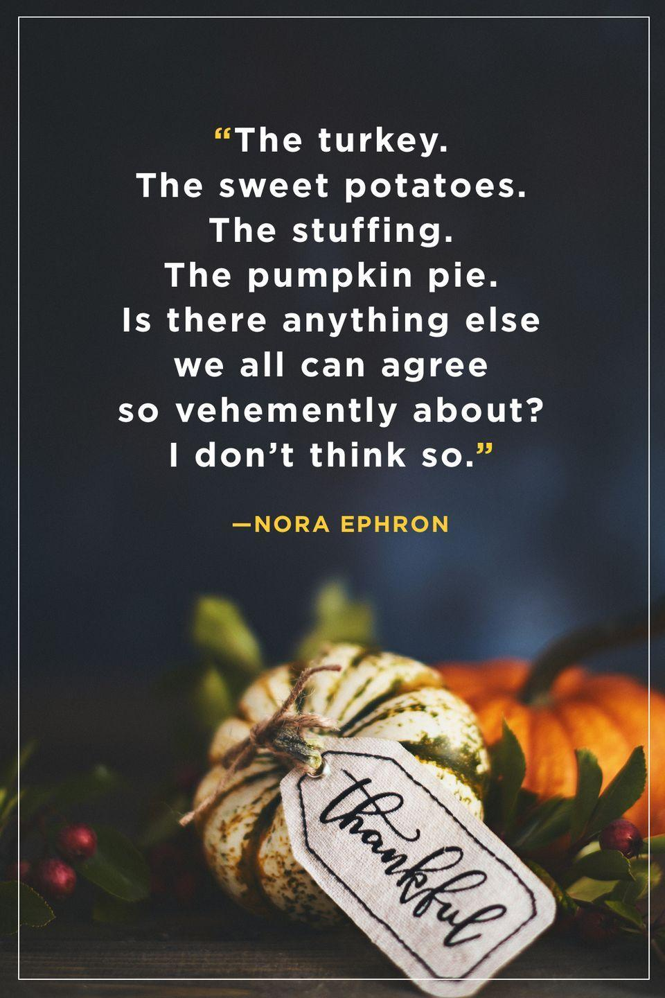 """<p>""""The turkey. The sweet potatoes. The stuffing. The pumpkin pie. Is there anything else we all can agree so vehemently about? I don't think so.""""</p>"""