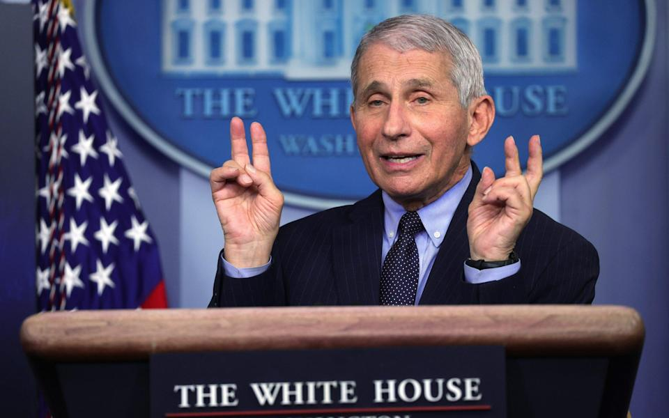 "Fauci said he feared ""repercussions"" if he contradicted the president - GETTY IMAGES"