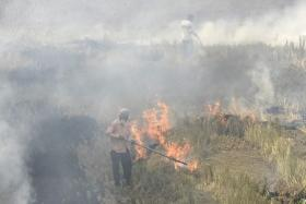 UP govt seeks reply from various district police chiefs over incidents of stubble burning