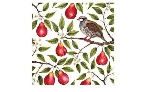 John Lewis's Museums & Galleries Partridge in a Pear Tree Christmas Card - pack of 5