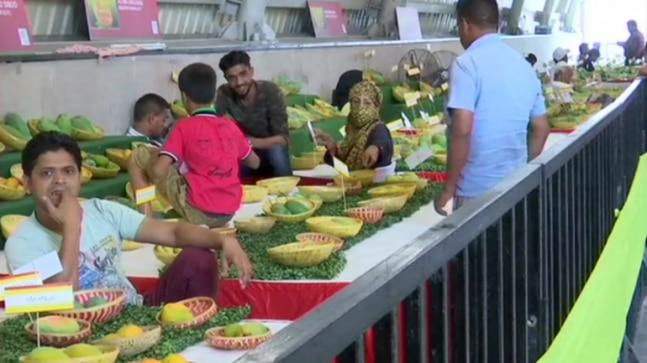 More than 500 varieties of mangoes collected from the Northern parts of India were at display in Dilli Haat in Janakpuri this weekend.