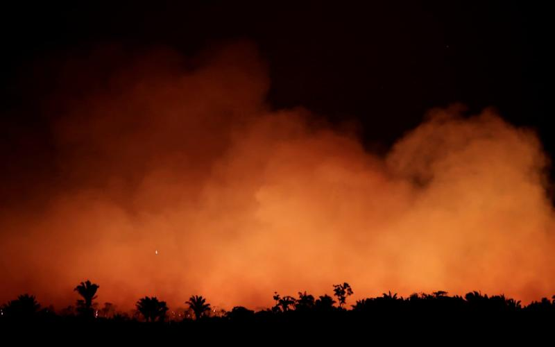Smoke billows during a fire in an area of the Amazon rainforest near Humaita, Amazonas State - REUTERS