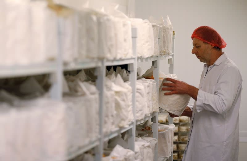 Robert Gosling places a cylinder of Stilton cheese onto a shelf in the chiller room at Hartington Creamery near Matlock
