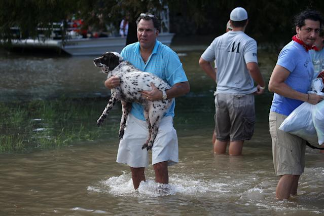 <p>A man carries his dog through flood water after being evacuated from the rising water following Hurricane Harvey in a neighborhood west of Houston, Texas, Aug. 30, 2017. (Photo: Carlo Allegri/Reuters) </p>