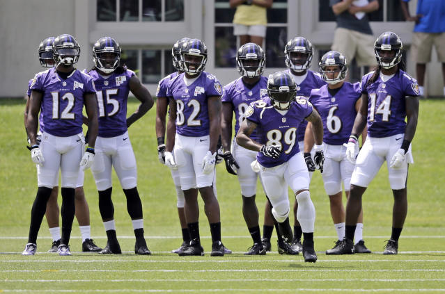 Steve Smith, Lardarius Webb get into scrap at Baltimore Ravens' minicamp