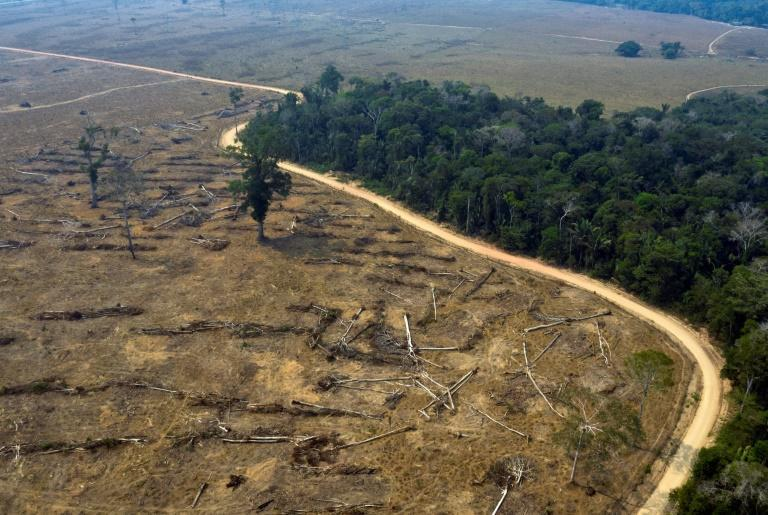Burnt areas of the Amazon rainforest in Brazil's Rondonia state in August 2019 -- meat processing giant JBS has said it will work to ensure its cattle do not come from deforested regions after being accused of fueling destruction of the Amazon