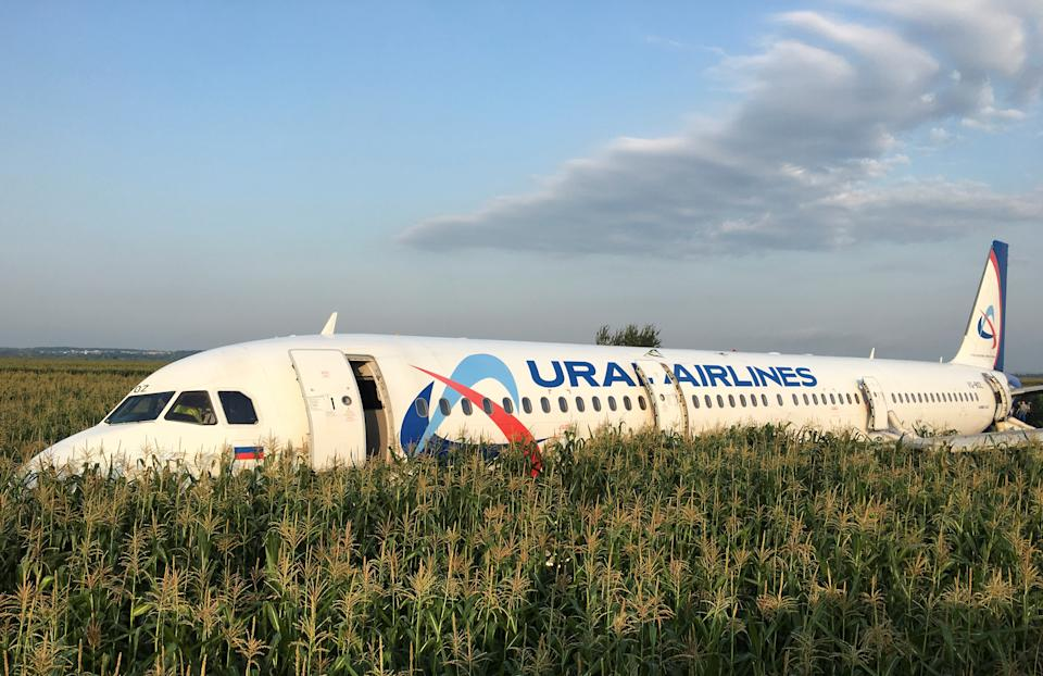 The Ural Airlines Airbus 321 passenger plane came to rest in a field near the airport after a dramatic emergency landing. (Reuters)