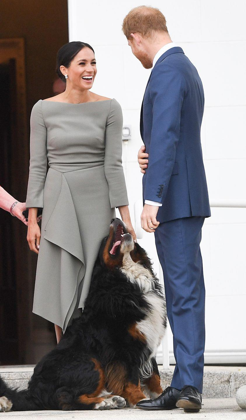 """<p>During their trip to Ireland in July 2018, the couple made 'friends' with the Irish President's dog. No wonder they welcomed a <a href=""""https://www.elle.com/uk/life-and-culture/a22847191/prince-harry-meghan-markle-adopt-labrador-retriever/"""" rel=""""nofollow noopener"""" target=""""_blank"""" data-ylk=""""slk:new Labrador Retriever called Oz"""" class=""""link rapid-noclick-resp"""">new Labrador Retriever called Oz</a> to their family! </p>"""