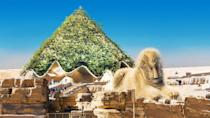 <p>Adorned in gorgeous green foliage, we love how the pyramids in Egypt have been reimagined. <br></p><p>'As you can see we covered the existing pyramid shape with lush greenery,' says Yaniv, explaining the idea behind the redesign. 'The sand dune reflected in the wave structure at the base of the pyramid was inspired by architect Chad Oppenheim's interpretation of the landscape.'<br></p>