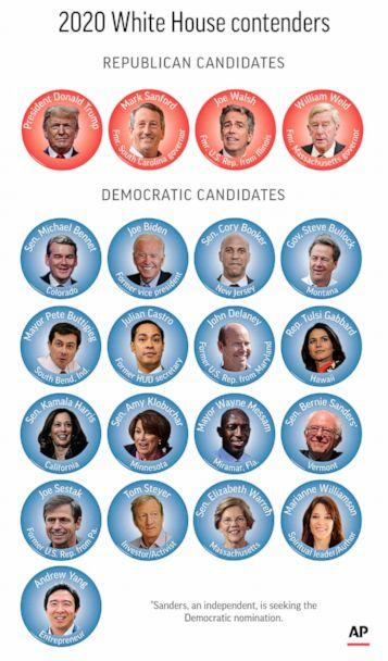 PHOTO: Candidates still in the race for president in 2020. (via AP)