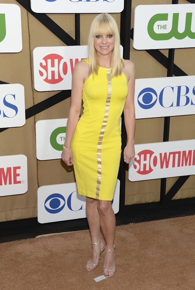 LOS ANGELES, CA - JULY 29: Anna Faris attends the CW, CBS And Showtime 2013 Summer TCA Party on July 29, 2013 in Los Angeles, California. (Photo by Jason Kempin/Getty Images)