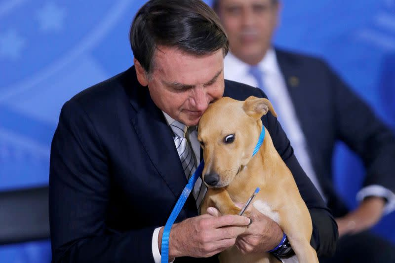 FILE PHOTO: Brazil's President Jair Bolsonaro holds his dog 'Nestor' during a sanction ceremony of the law for the defense of animals