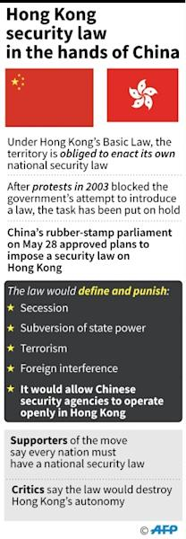 Beijing has hit out at foreign criticism of its national security law (AFP Photo/John SAEKI)
