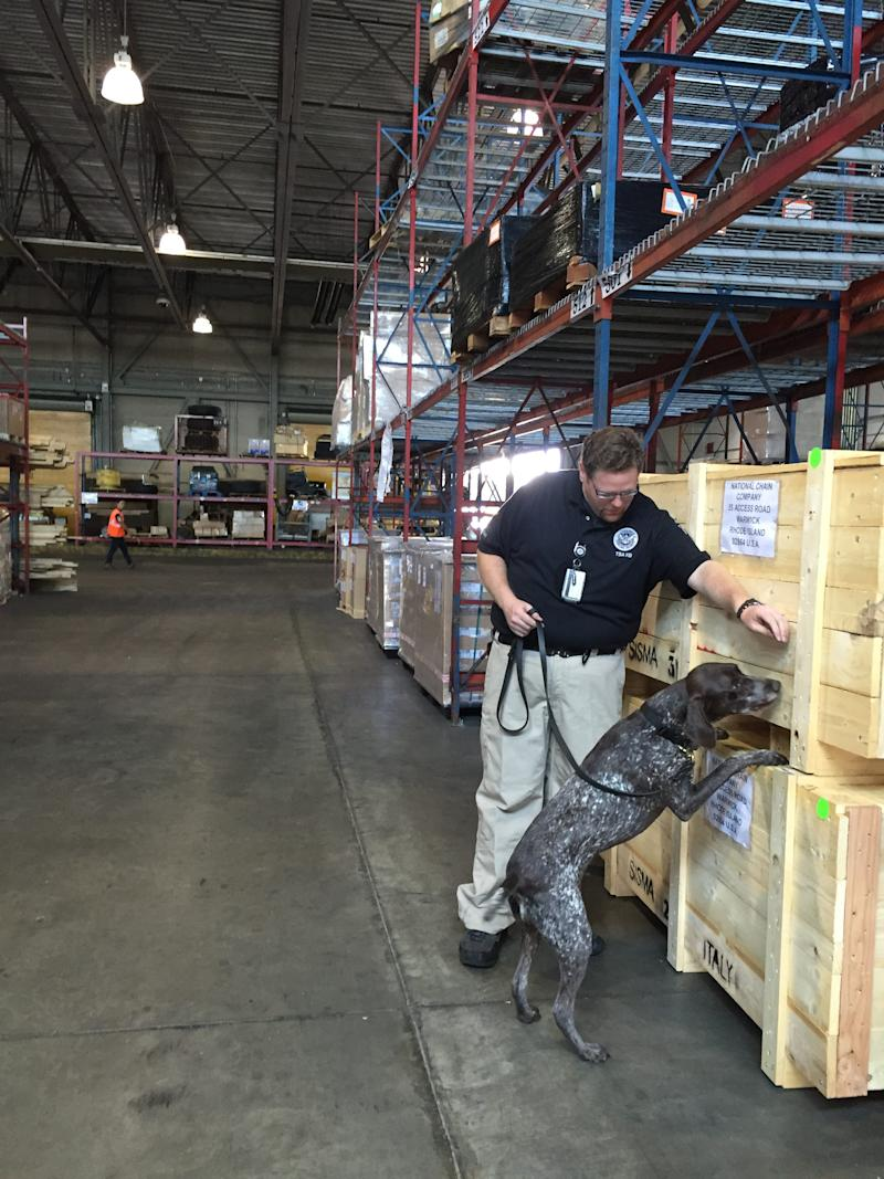 """Francis """"Frank"""" Boccabella III and his previous canine partner, Zmay, are seen inspecting cargo for explosives in 2015."""