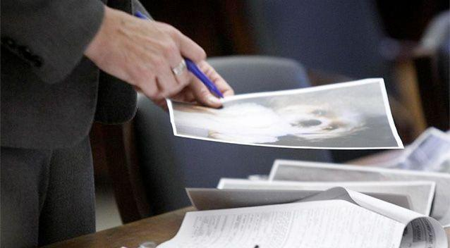 Assistant Prosecutor Michele Miller holds a photo of Honey Bey, a Shih Tzu dog, during Haniyyah Barnes' court appearance. Photo: AP.