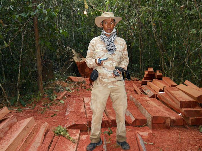 In this photo taken, Feb. 6, 2012, and released by The Cambodian Center for Human Rights (CCHR), Chut Wutty stands on wooden planks of log in a jungle in Kampong Thom province in northern of Phnom Penh, Cambodia. The eulogies called Wutty one of the few remaining activists in Cambodia brave enough to fight massive illegal deforestation by the powerful. The environmental watchdog was shot by a military policeman in April as he probed logging operations in one of the country's last great forests. (AP Photo/The Cambodian Center for Human Rights)