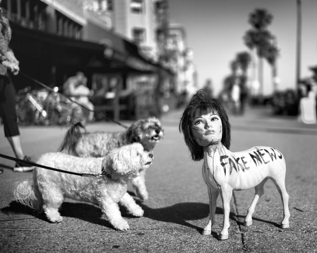 <p>Two dogs, taking an afternoon stroll on the boardwalk with their respective owners, seem quite surprised to stumble upon a provocative creation made from recycled materials by a local street artist. (© Dotan Saguy) </p>