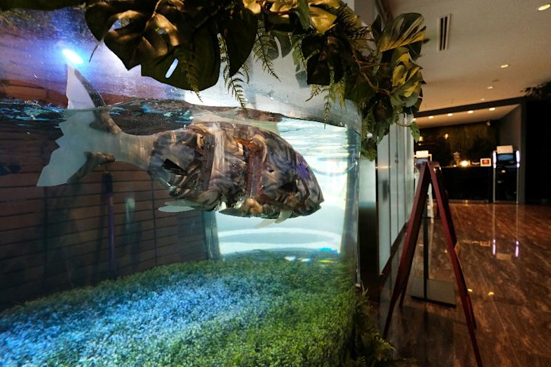 Even the fish are robotic with electric lights on their battery-powered bodies (AFP Photo/Kazuhiro NOGI)