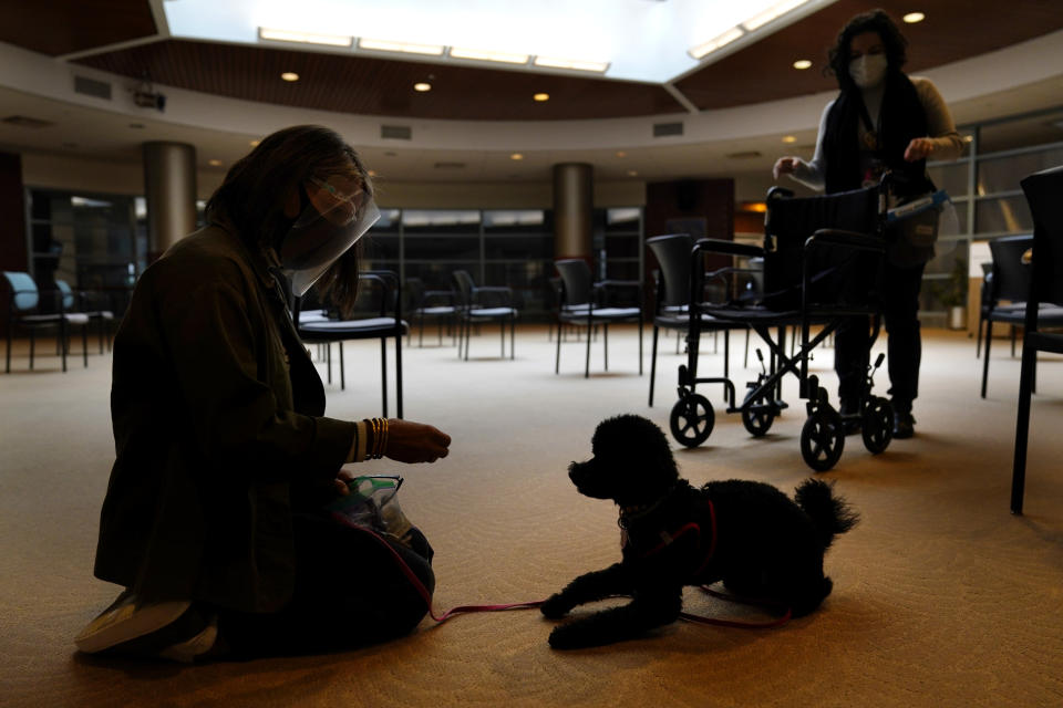 Owner Joy Solomon, left, and therapeutic activities staff member Olivia Cohen work with Redwood, a poodle, to accustom him to common nursing home sights, such as wheelchairs, at The Hebrew Home at Riverdale in New York, Wednesday, Dec. 9, 2020. New dog recruits are helping to expand the nursing home's pet therapy program, giving residents and staff physical comfort while human visitors are still restricted because of the pandemic. (AP Photo/Seth Wenig)