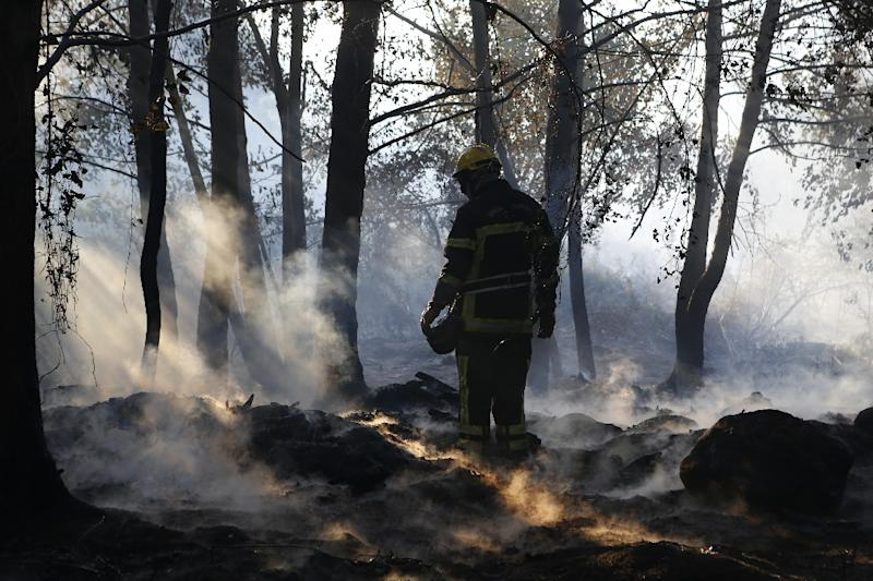 Almost 1,000 people wre evacuated in Corsica overnight but on Saturday firefighters managed to contain the blaze (AFP Photo/PASCAL POCHARD-CASABIANCA)