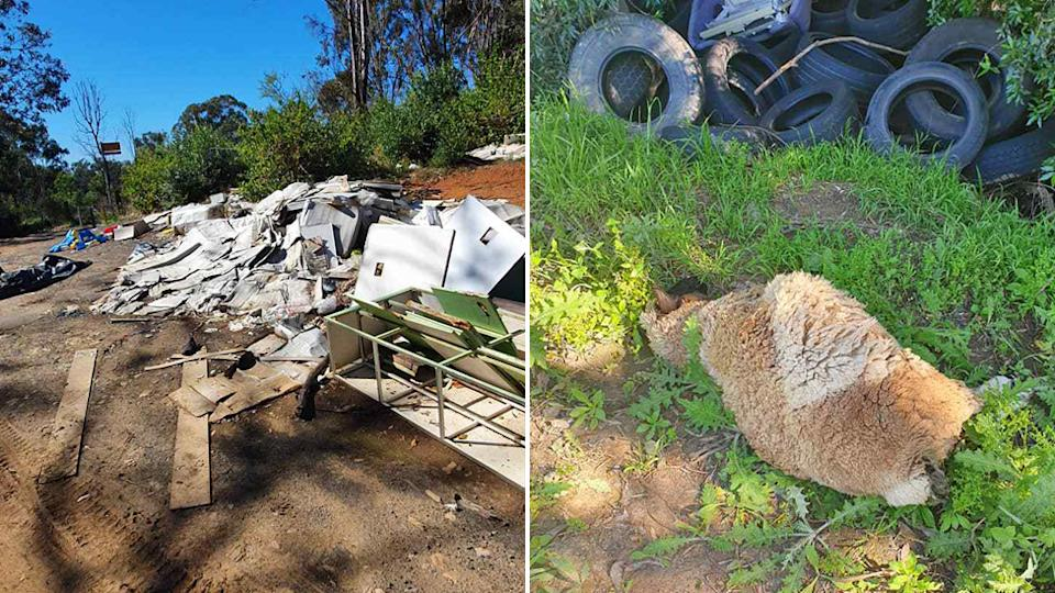 A dead sheep found in Sydney Western Parklands and piles of rubbish dumped.
