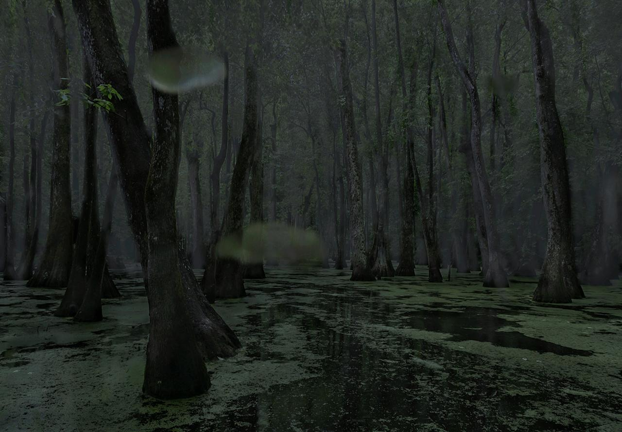 <p>Middle Mississippi. (Photograph by Jeanine Michna-Bales) </p>