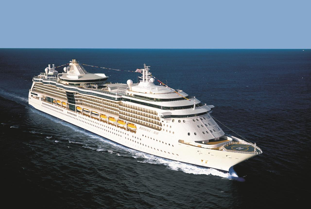 Man accused of trying to throw partner off cruise ship