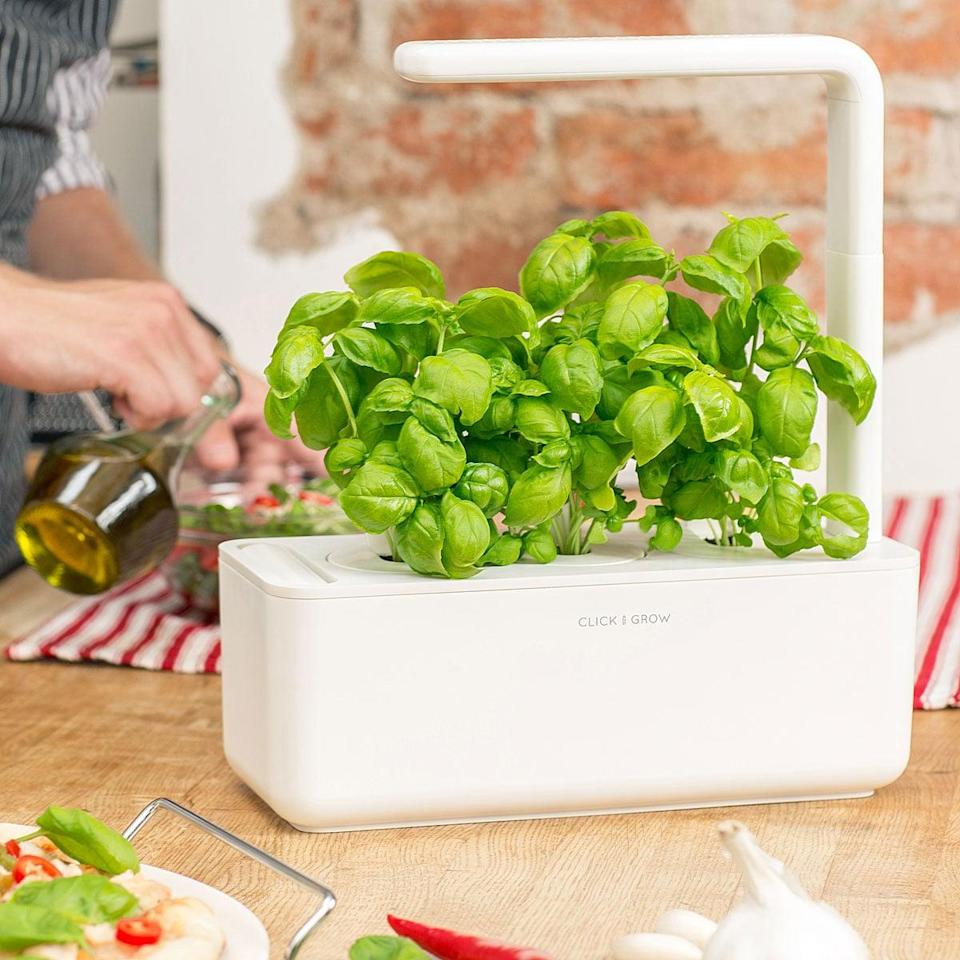 <p>Grow herbs and veggies with the <span>Smart Garden Grow Kit</span> ($100). It includes NASA-inspired soil that will give plants the proper amounts of oxygen, nutrients, and water. All you do is add water to a capsule once a month and you're set.</p>