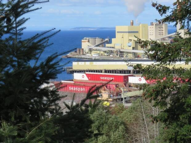 More than a third of the workers at the Catalyst Paper Mill in Powell River, B.C., are still out of a job.  (Submitted by Eldon Haggarty - image credit)
