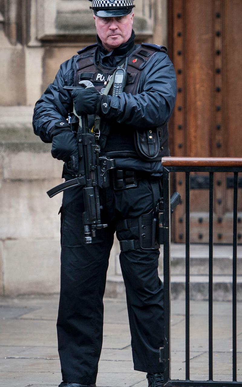 More armed officers are being recruited  - Credit: PA