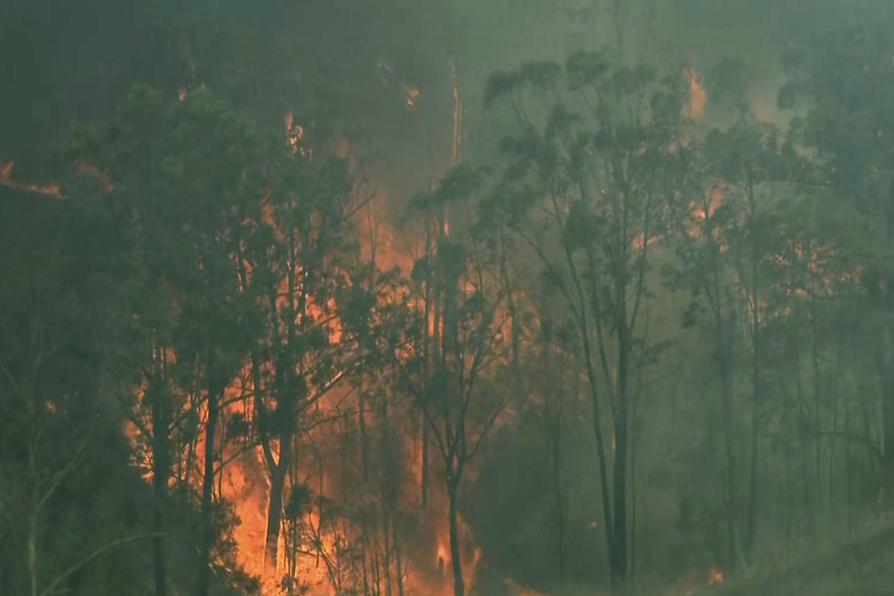 In this image made from video, forest trees are on fire in Hillville, New South Wales state, Australia, Wednesday, Nov. 13, 2019. More than 50 homes were damaged or destroyed and 13 firefighters were injured overnight by catastrophic wildfires across Australia's most populous state before the emergency subsided on Wednesday, officials said. (Australian Broadcasting Corporation via AP)