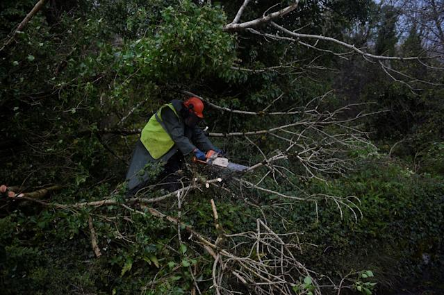 <p>A worker clears fallen trees off a road with a chainsaw during Storm Ophelia in the County Clare area of the Burren, Ireland, Oct.16, 2017. (Photo: Clodagh Kilcoyne/Reuters) </p>