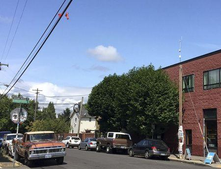 A pair of sex toys hang over power lines above a residential street in Portland