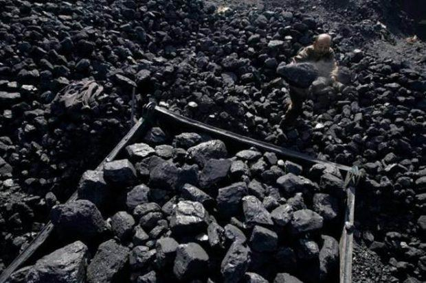 The Lohara block was allocated to the company by the Union coal ministry in 2007, and subsequently it was cancelled in 2009