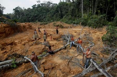 FILE PHOTO: Indigenous people from the Mura tribe shows a deforested area in unmarked indigenous lands inside the Amazon rainforest near Humaita