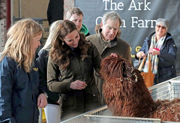 PHOTO: Britain's Catherine, Duchess of Cambridge reacts as she views an alpaca during her visit to Ark Open Farm near Belfast on Feb. 12, 2020. (Liam Mcburney/AFP via Getty Images)