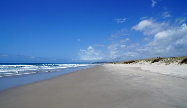 "<div class=""caption""> Tara Iti plays along Te Arai Beach, a large and seemingly untouched stretch of coast </div>"