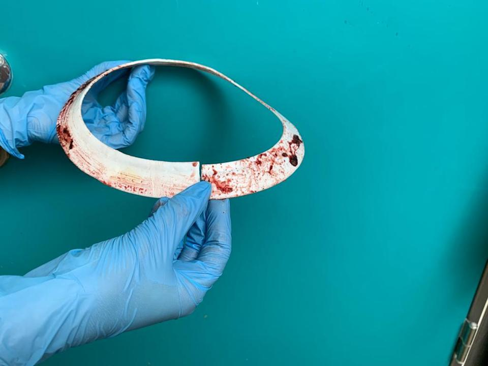 The white disc, thought to be a component used in large scale pipework, has been cut from Mrs Vicar. (RSPCA/ PA)