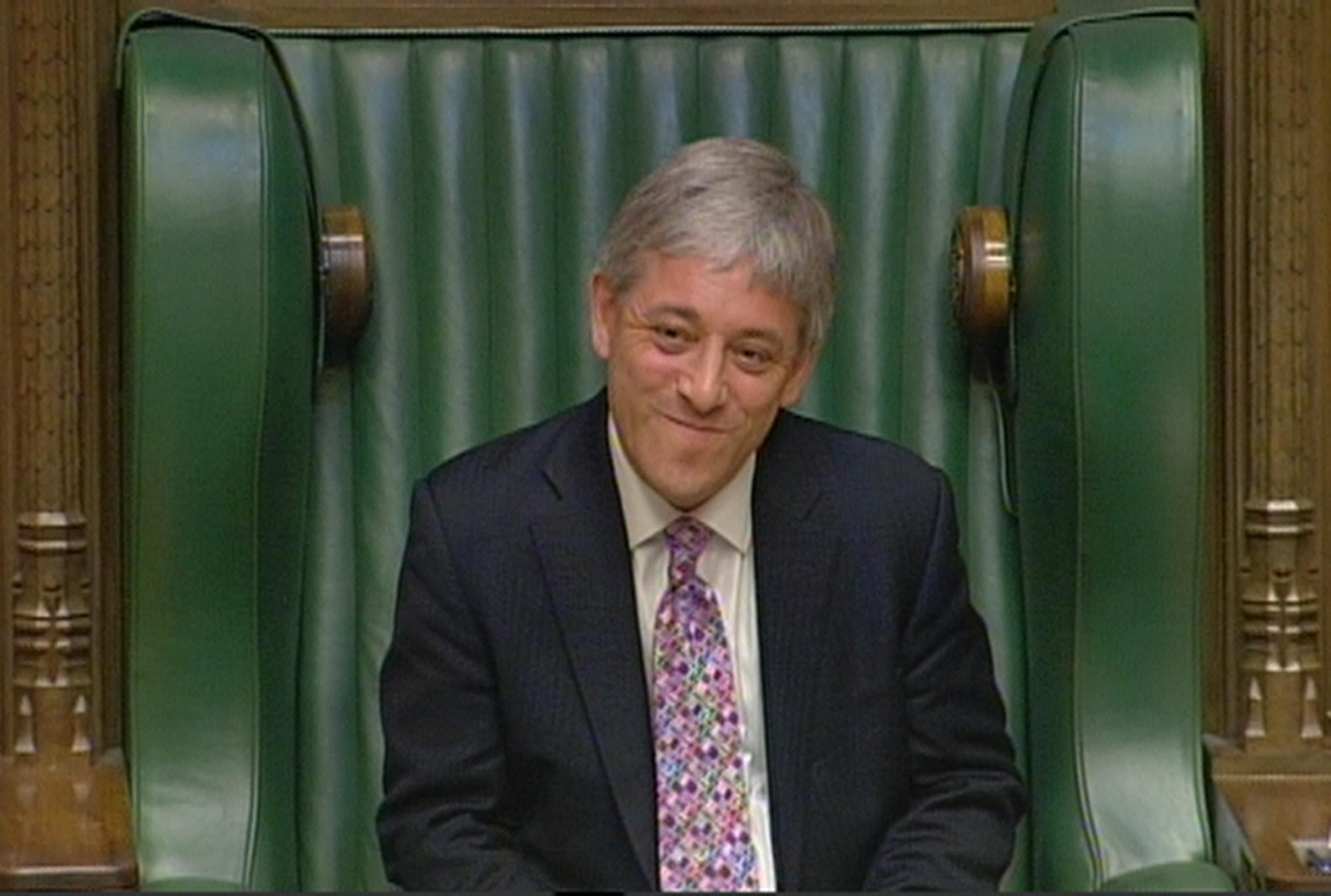 Early days: Mr Bercow as Speaker in June 2009 after being voted in by secret ballot. (PA)