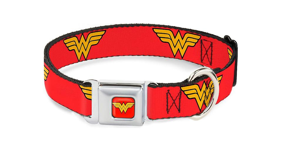 Buckle-Down Wonder Woman Seatbelt Buckle Dog Collar, $18.85, chewy.com (Photo: Chewy)