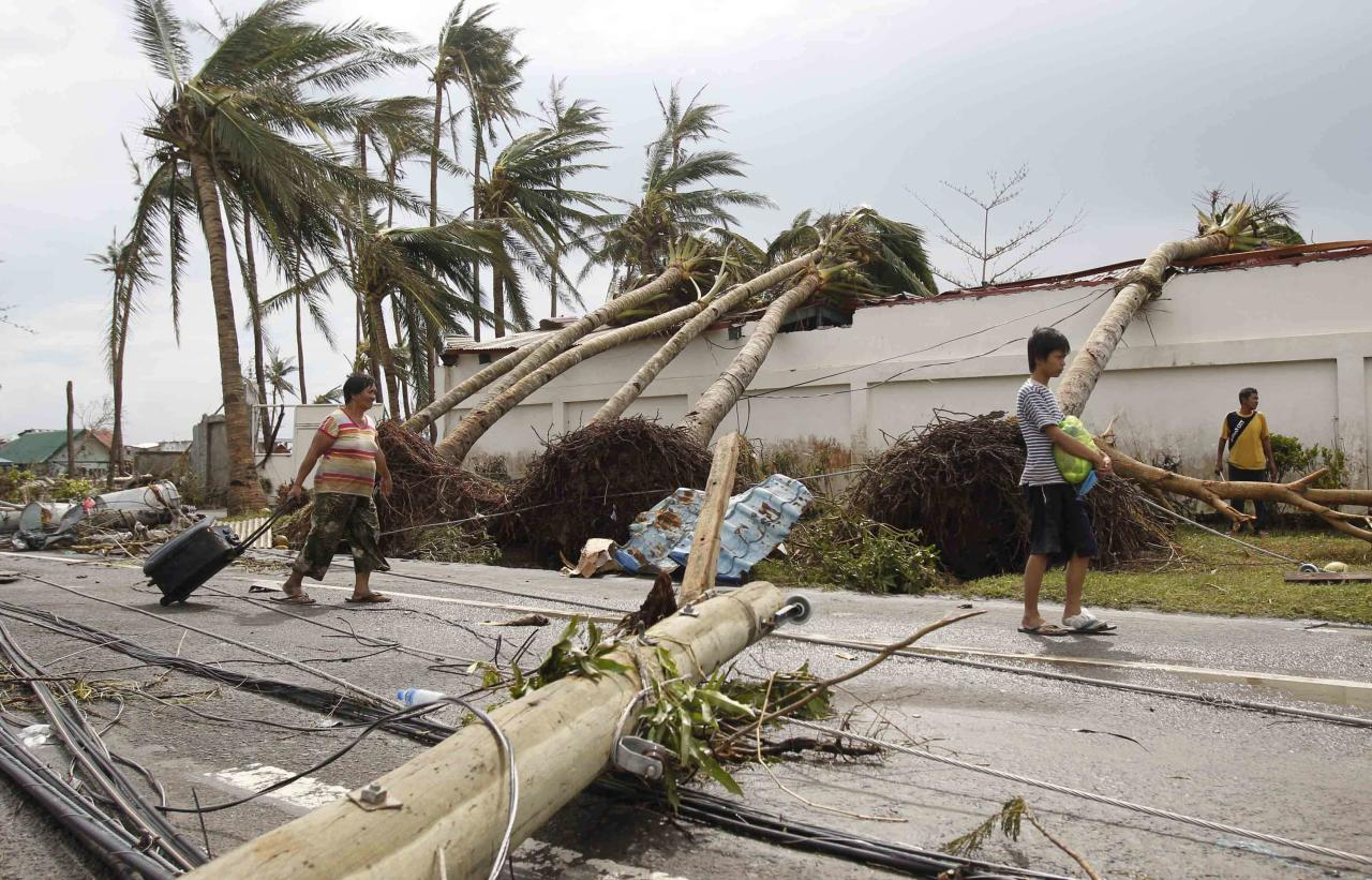 Survivors walks past uprooted trees after super Typhoon Haiyan battered Tacloban city, central Philippines
