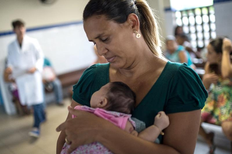 The World Health Organization says a surge in cases in South America of microcephaly is likely caused by the mosquito-borne Zika virus (AFP Photo/Christophe Simon)