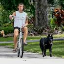 <p>Shawn Mendes rides around Miami on Wednesday with his dog Thunder by his side.</p>