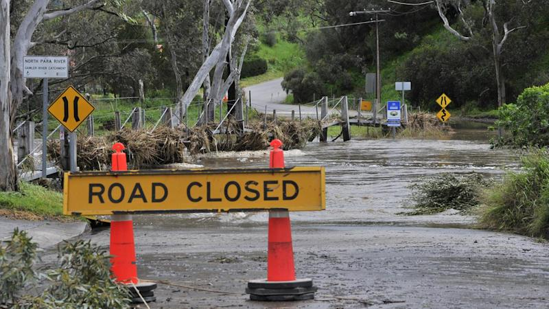 Barossa flooded but winemakers not fussed