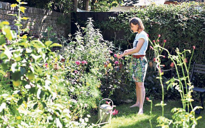 Learning curve: Vincent learned that not everything goes to plan in the garden - Clara Molden for The Telegraph