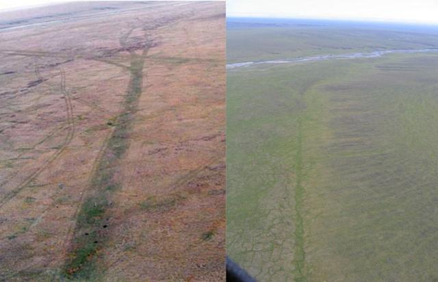 Aerial images of a seismic trail made in the winter of 1985 in the 1002 area of the Arctic National Wildlife Refuge, near Simpson Cove. The image on the left was taken in July 1985. The image on the right was taken in July 2007 — 22 years after the disturbance.