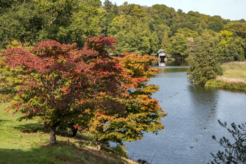 Winkworth Arboretum is already seeing early autumn colour (National Trust/Hugh Mothersole/PA)