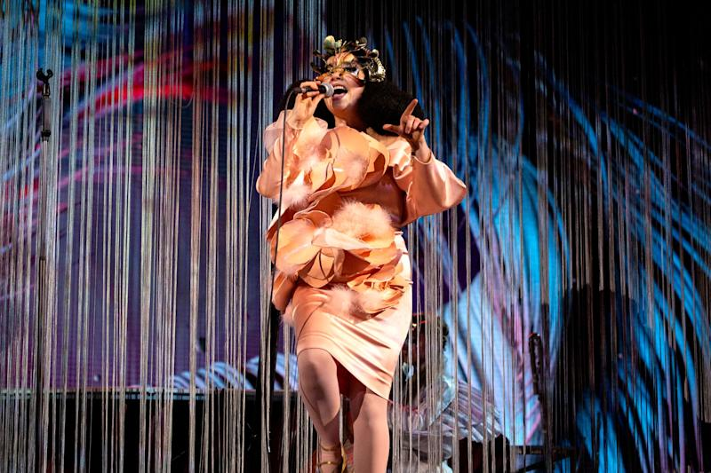Known for her unique and avant-garde approach to music, Bj&ouml;rk has an impressive 15 Grammy nominations to her name, placing her high on the list of musicians who've received the most recognition without an actual win.<br /><br />Among her nominations are Best Alternative Album nods for her last six albums, although none of these resulted in a win.