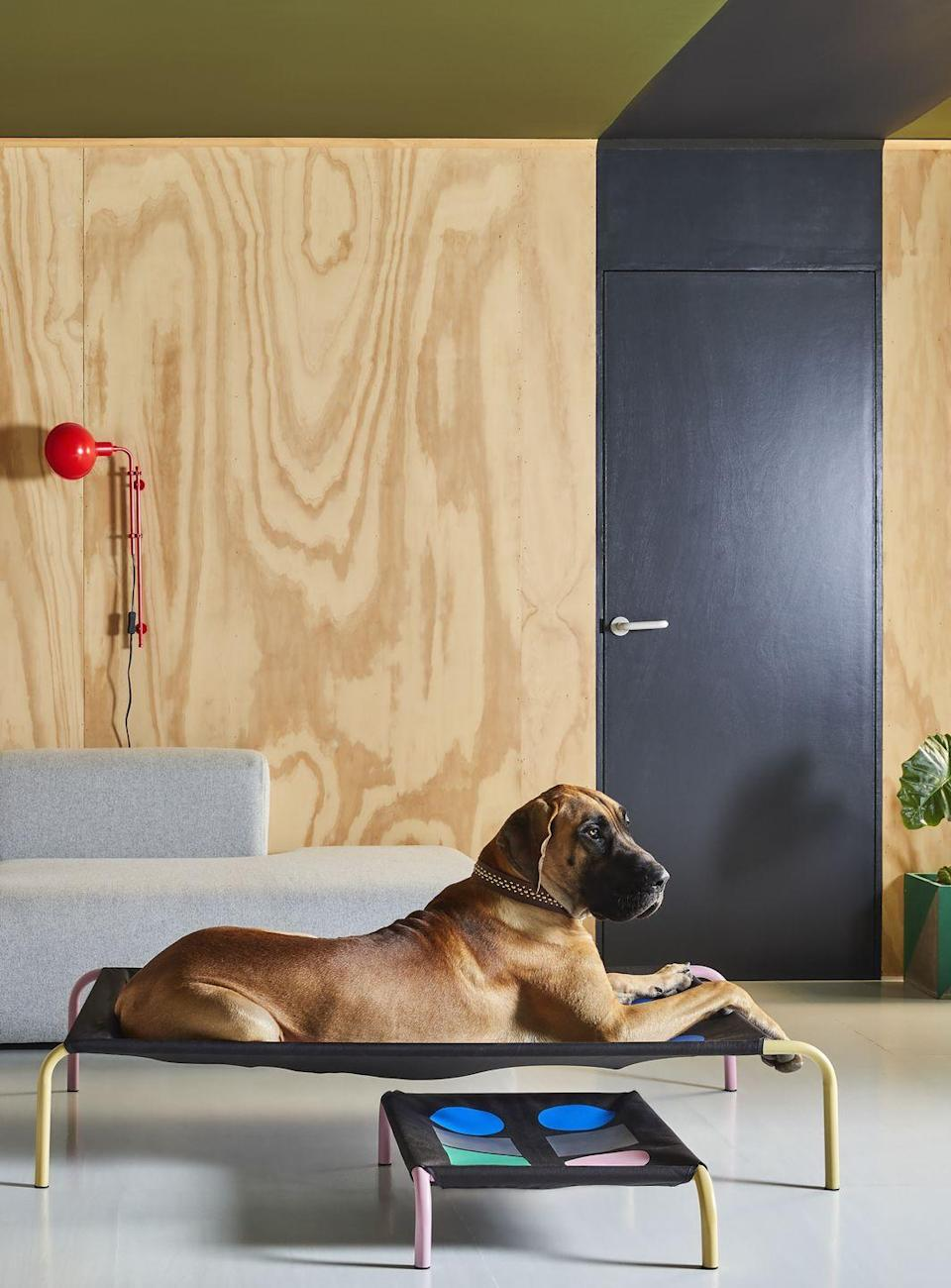"""<p>Manchester-based brand Hik9 has teamed up with Studio Rhonda to create a series of seven striking beds that feature graphic prints, punchy colours and sleek lines: 'I wanted to make the product a desirable item of furniture for the home, rather than just a dog bed,' explains Studio Rhonda founder Rhonda Drakeford. 'Each product is really individual in its cut and design, you could even hang it on the wall as a piece of artwork in your home if you wanted to.' From £70, <a href=""""https://www.hik9.com/"""" rel=""""nofollow noopener"""" target=""""_blank"""" data-ylk=""""slk:hik9.com"""" class=""""link rapid-noclick-resp"""">hik9.com</a><br></p>"""