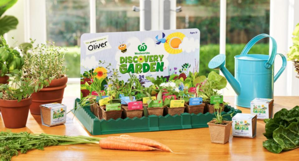 A Woolworths Discovery Garden Kit